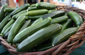 Basket of Zucchinis